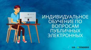 Индивидуальное обучение по вопросам публичных электронных
