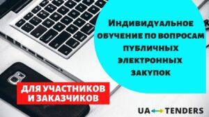 Индивидуальное обучение по вопросам публичных электронных закупок